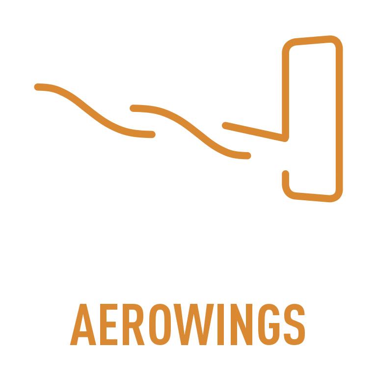 LOGO_AEROWINGS