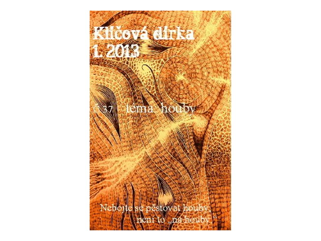 KLÍČOVÁ DÍRKA Č. 37 - 1/2013