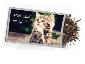 Pohled s dárkem Kočka
