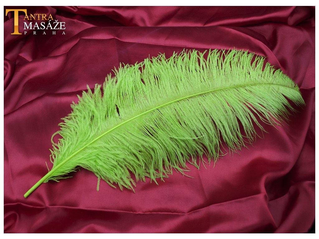pirko green