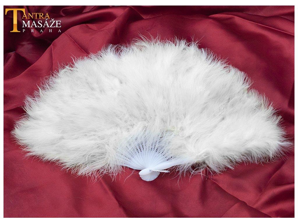 Luxusní bílý vějíř
