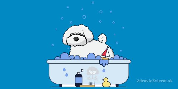 Naučte vášho psíka tešiť sa na kúpanie