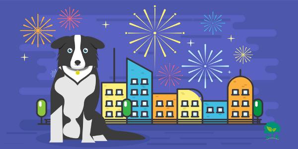 """9 tipov ako prežiť Silvester: dôležité informácie o strachu psov zo """"zábavnej"""" pyrotechniky"""