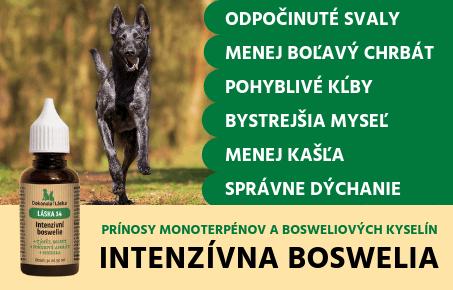 Dokonalá Láska Intenzívna Boswelia
