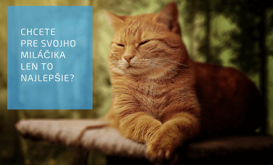 Zdraviezvierat.sk