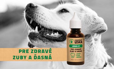 Dokonalá láska olej pre zdravé zuby a ďasná psov