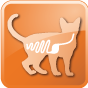 383_03_gastrointestinal-3-feline