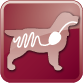65_49_icons Gastrointestinal canine PNG_2