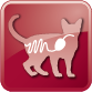 79_04_icons Gastrointestinal feline PNG_2
