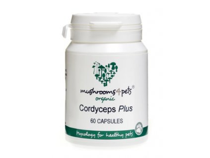 Mushrooms4pets Cordyceps plus
