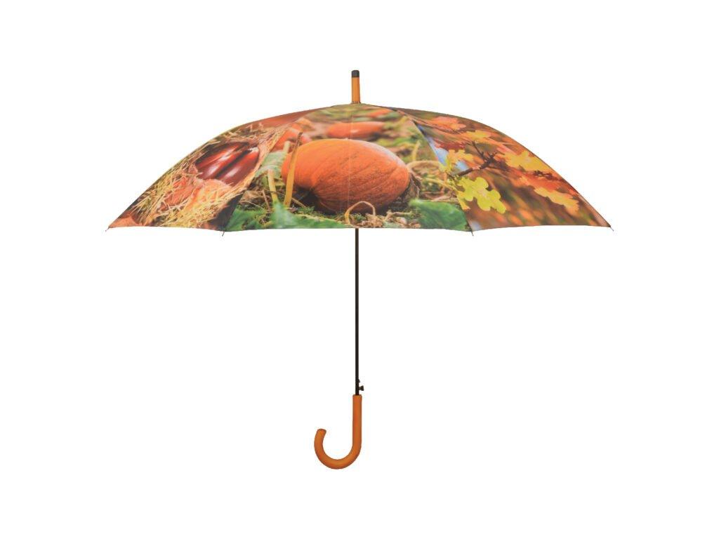 Deštník podzim