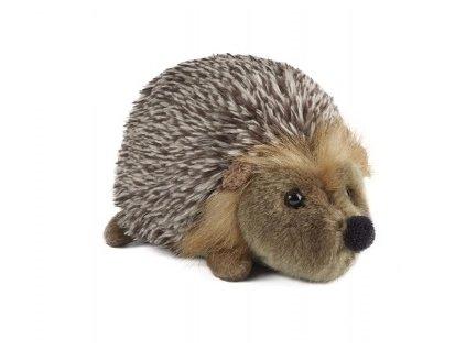 plyšák ježek střední
