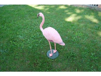 balabán plameňák - Flamingo 1750 BS
