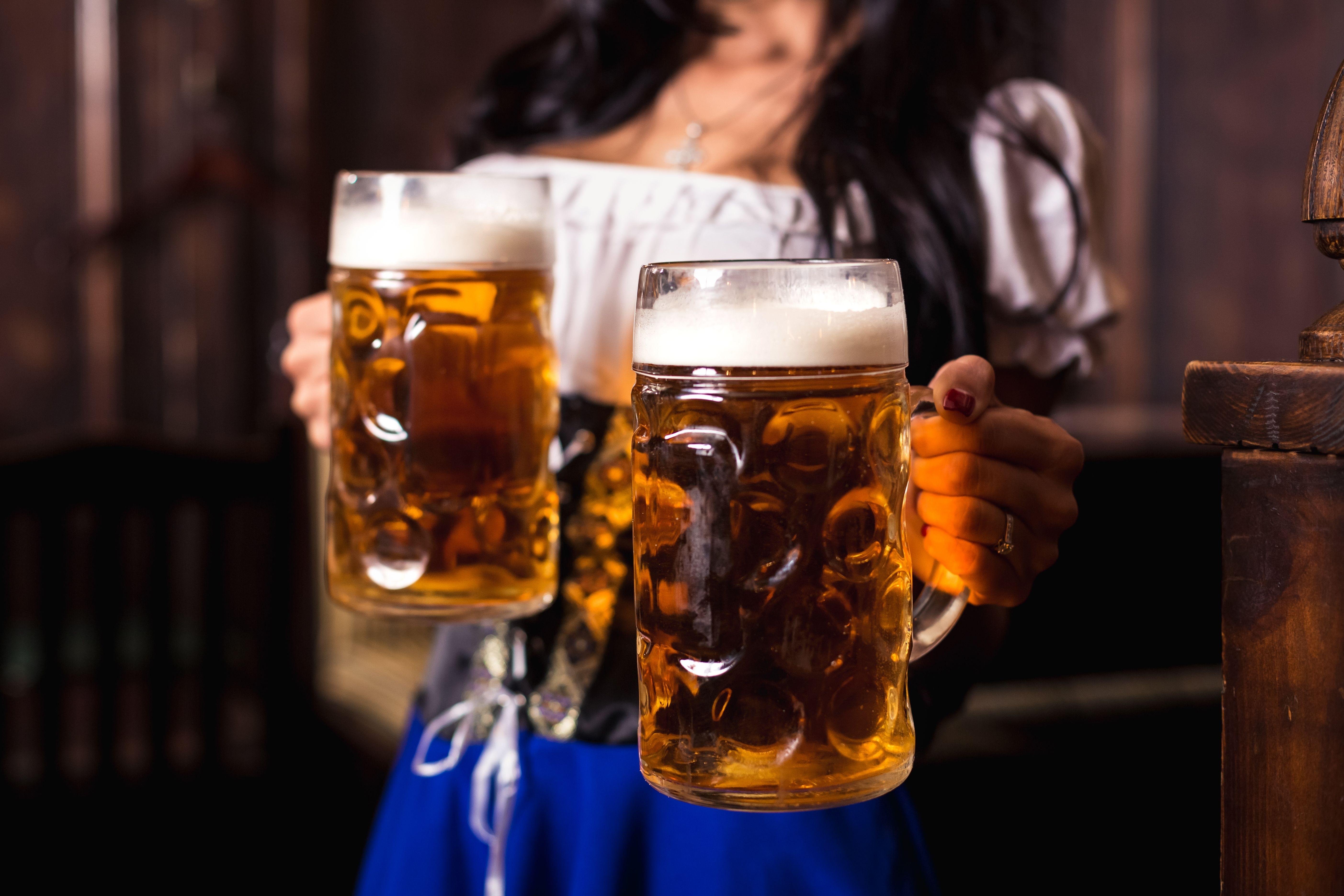 Průvodce pivními styly 1. díl - Ležák