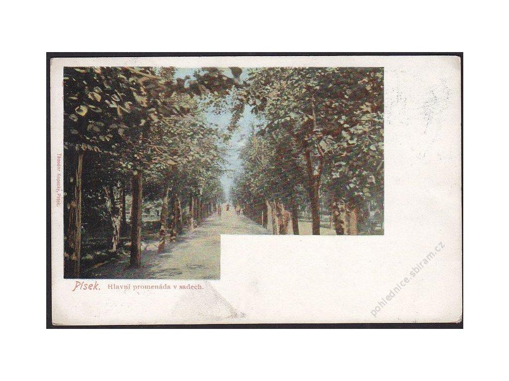 46 - Písek, hlavní promenáda v sadech, cca 1900