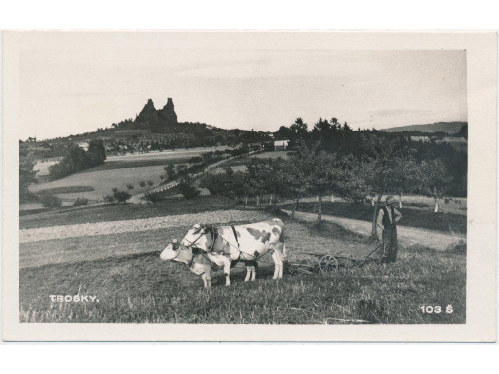 58 - Semilsko, Trosky, oživená partie z louky s výhledem na hrad, Foto Fon