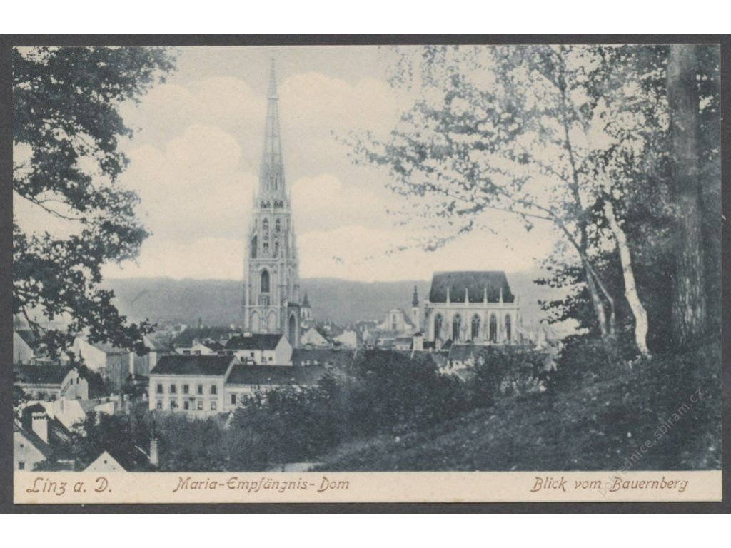 Austria, Upper Austria, Linz, Cathedral of the Immaculate Conception, cca 1906