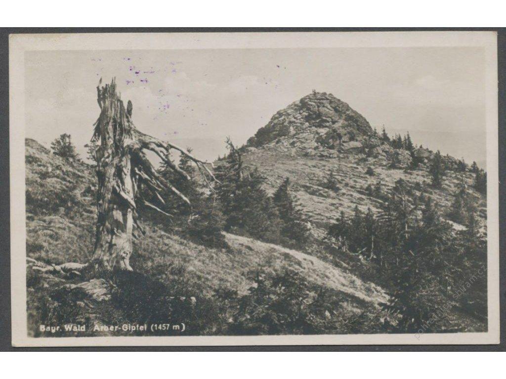 Germany, Bavaria, Bavarian Forest, Arber summit, publ. Riffelmacher, cca 1929