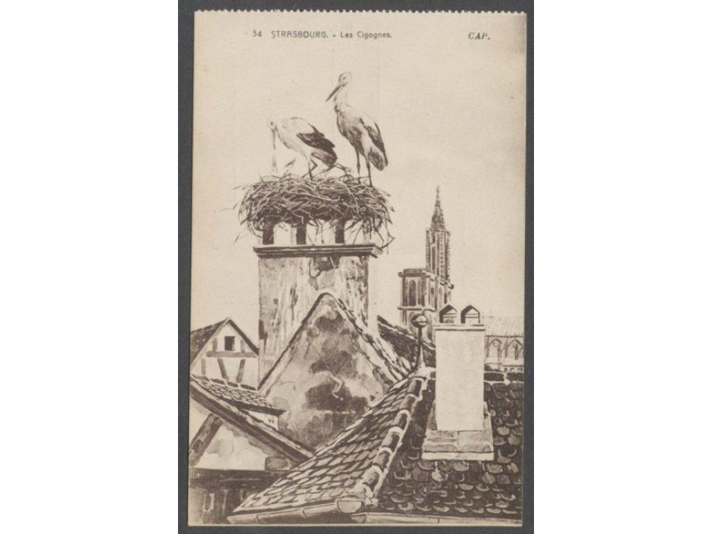France, Alsace region, Strasbourg, Storks, publ. Alsacienne, cca 1915