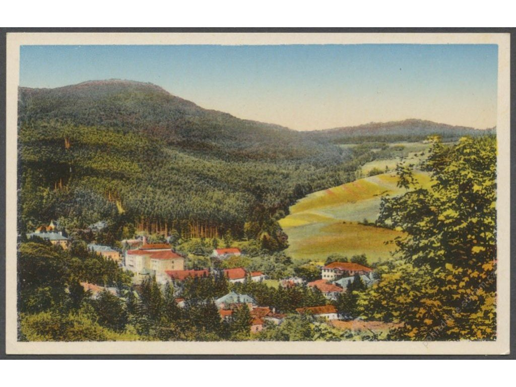 Slovensko, Bardiovské kúpele, panorama, publ. Neumann, cca 1935