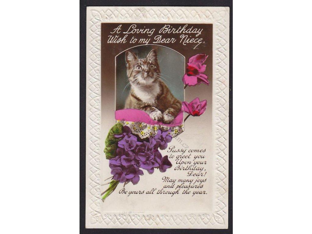 Blahopřejná kočičí, reliéfní okraje, ca 930