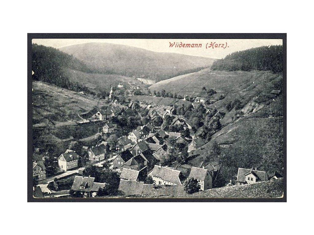 Deutschland, Wildemann (Harz), Totalansicht,  cca 1908