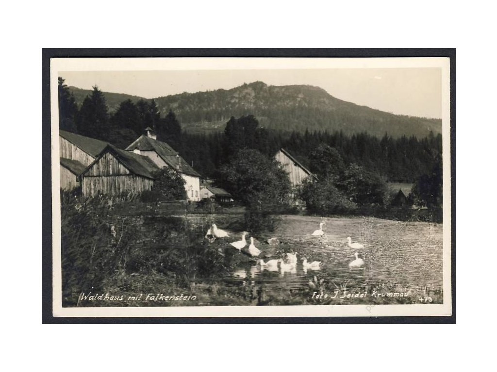 Österreich, Waldhaus mit Falkenstein, cca 1932