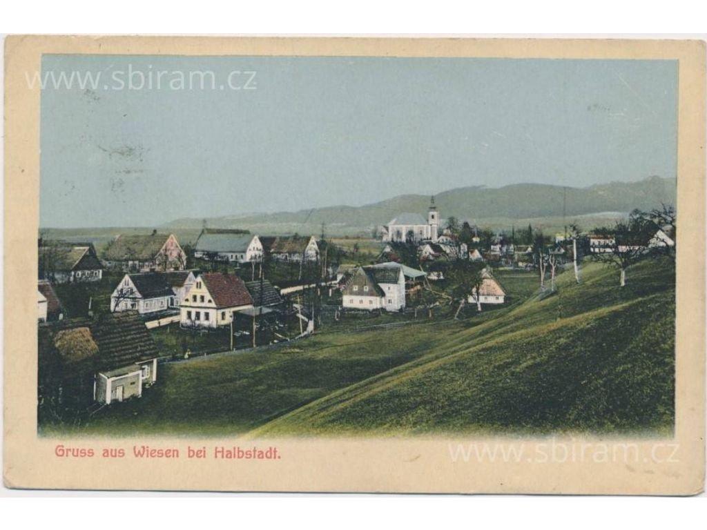38 - Náchodsko, Vižňov, celkový pohled na vesnici, cca 1910