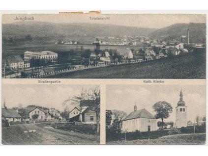 66 - Trutnovsko, Mladé Buky, 3-záběr, celk.pohled, kostel, ulice, 1917