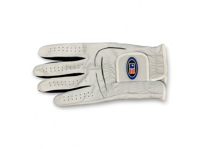 42247 ts glove top