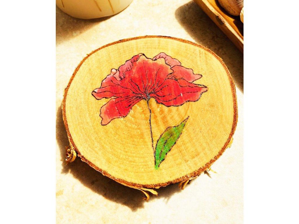 343 rozevlaty makovy kvet