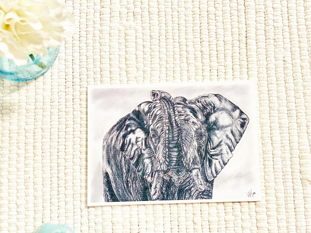 Pohlednice - Slon