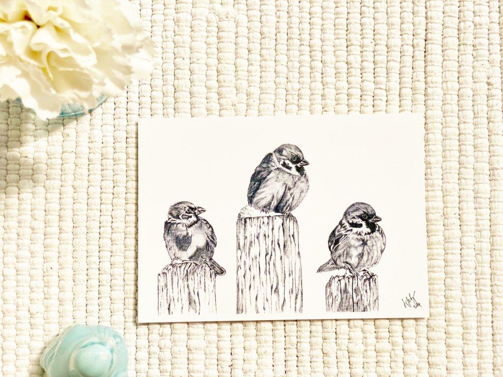 Pohlednice - Vrabčáci