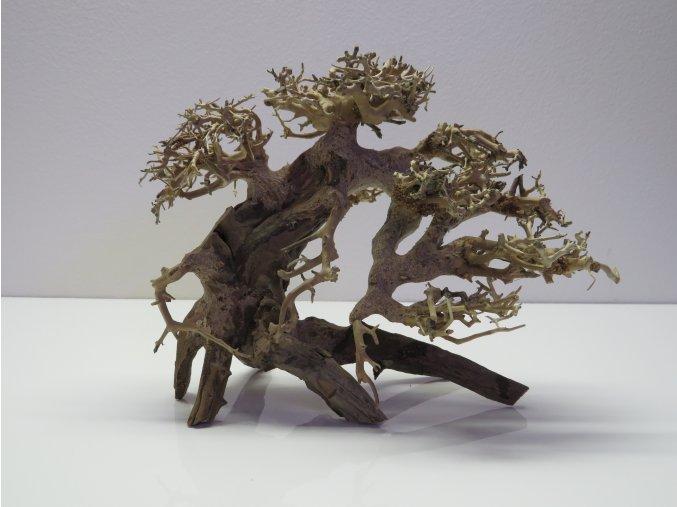 Bonsai wood S (BW35812)