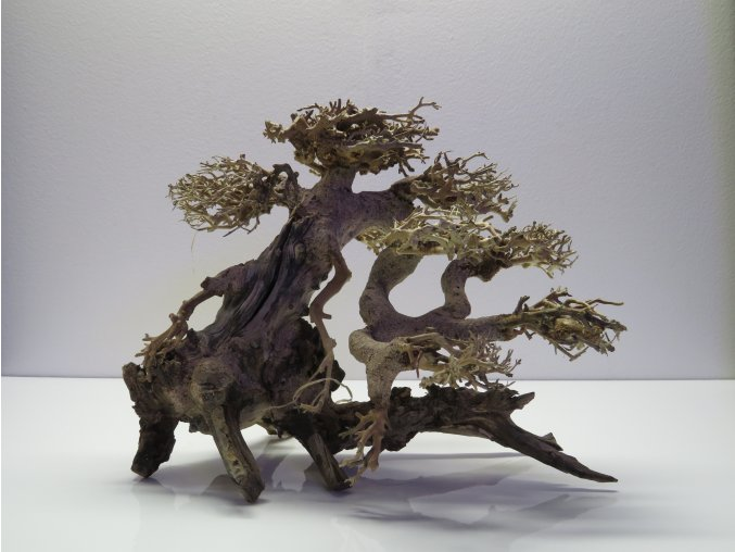 Bonsai wood M (BW40286)