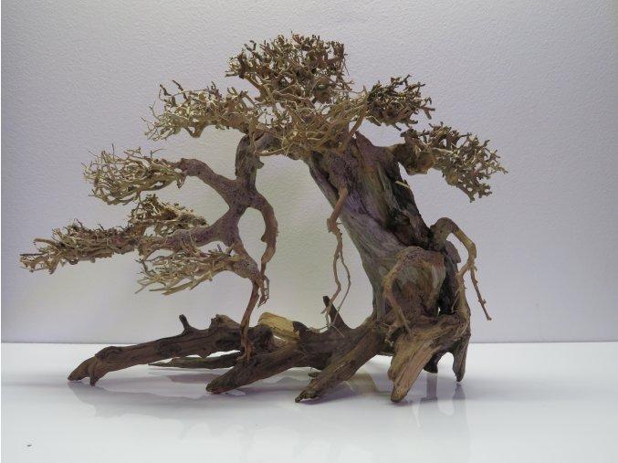 Bonsai wood L (BW40422)