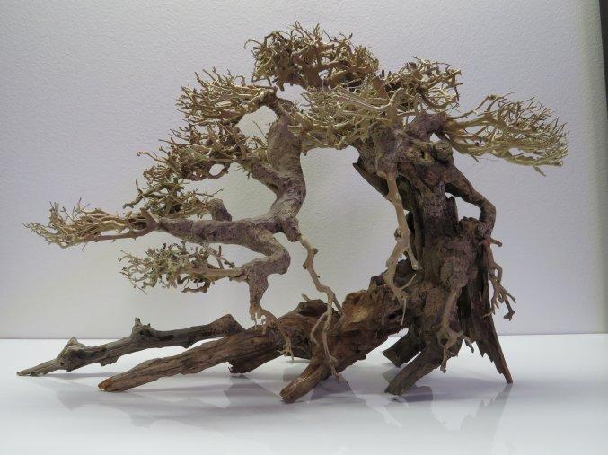 Bonsai wood L (BW40423)