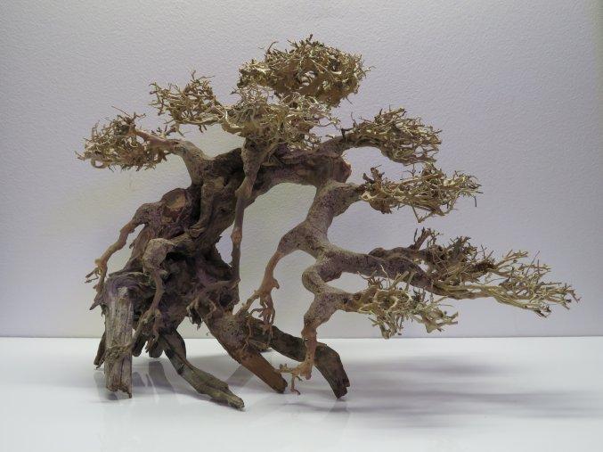 Bonsai wood L (BW40424)