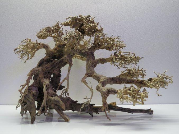 Bonsai wood L (BW40425)