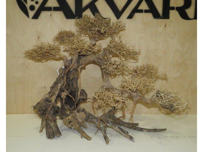 Bonsai wood XL (BW40591)