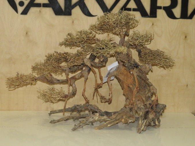 Bonsai wood XL (BW40731)