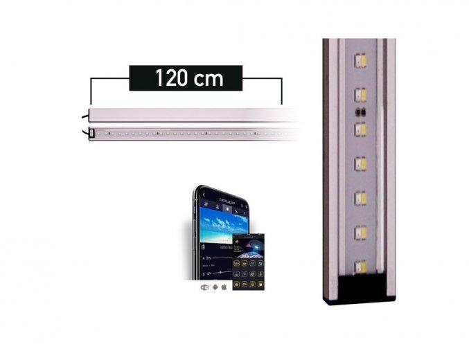 LANCIA1 plant 120
