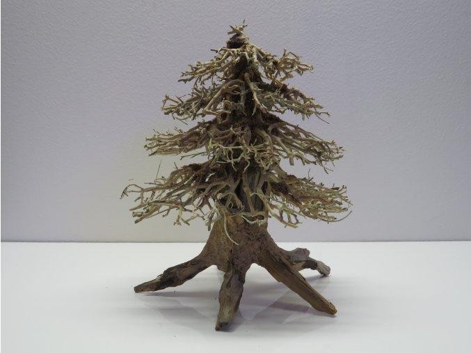 Wood forest M (WF41893)