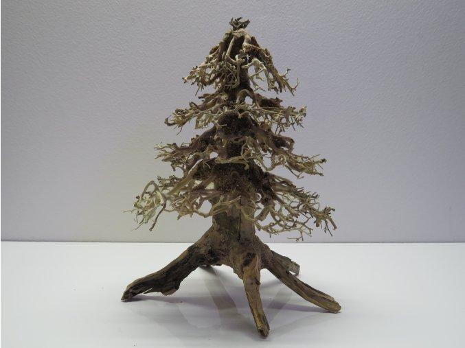 Wood forest M (WF41895)