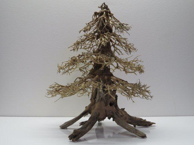 Wood forest L (WF41964)