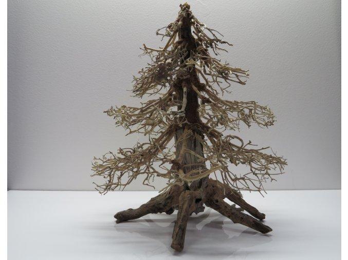 Wood forest L (WF41965)