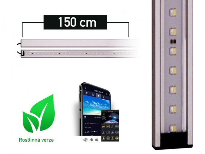 LANCIA1 plant 150