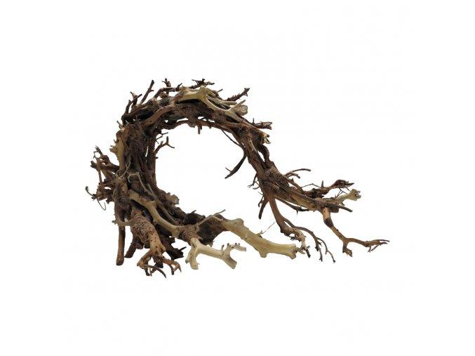 Wood dragon M (WD42261)