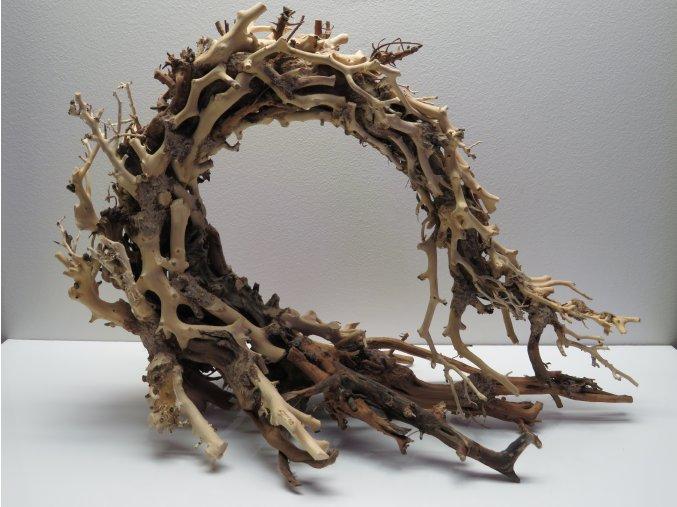 Wood dragon L (WD42331)