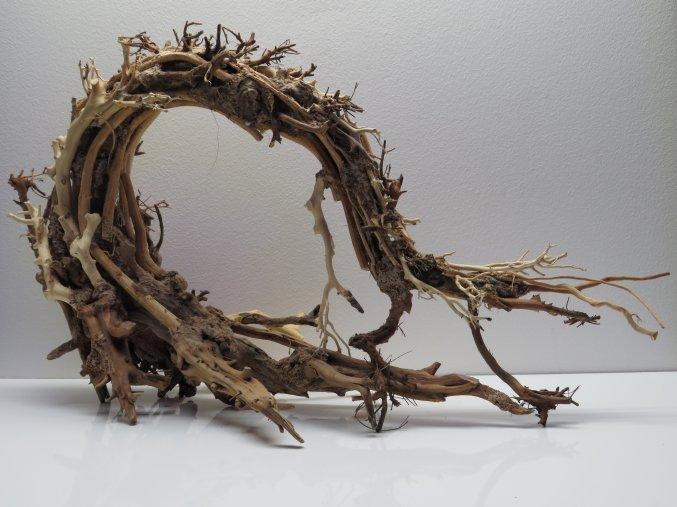 Wood dragon L (WD42332)